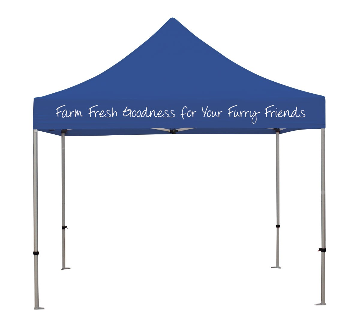 Canopy Tent Kit with 1 color imprint