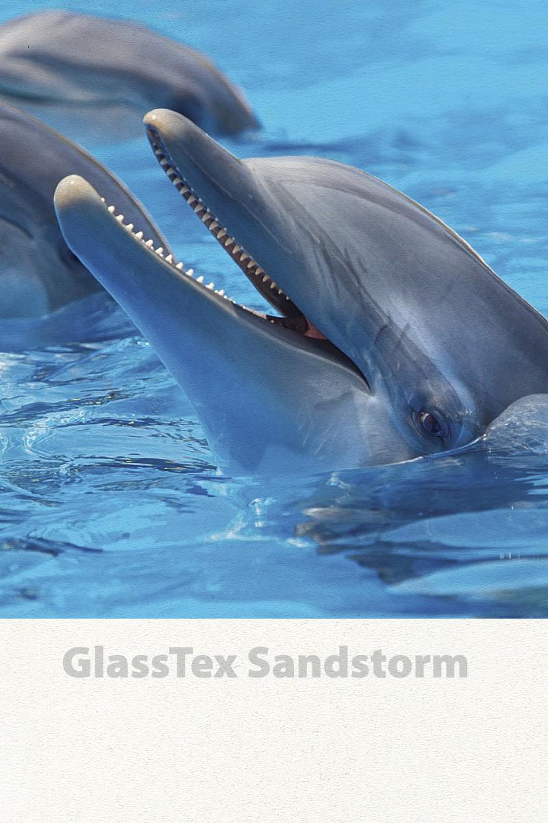 GlassTex Sandstorm printable privacy film graphics