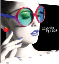 Vector Frame Essentials Backlit Display 10x8